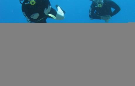 סנובה – מרכז צלילה: הטבה מיוחדת למורים