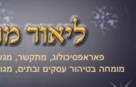 ליאור מרדכי
